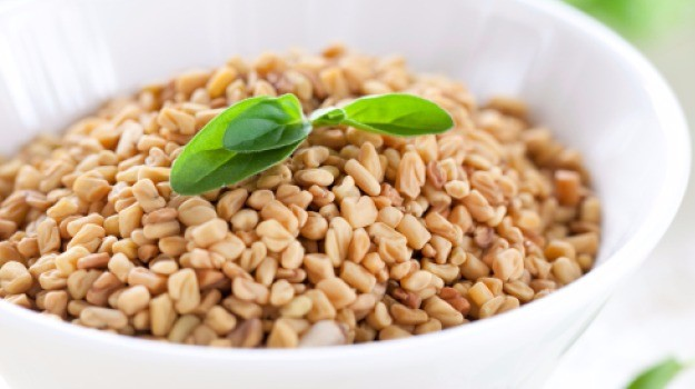 Excellent Quality Fenugreek Seeds
