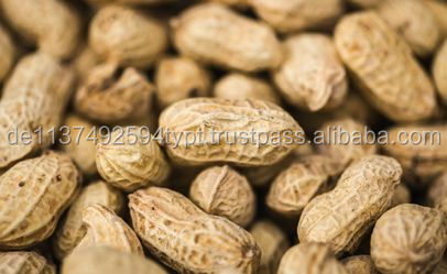 Raw Peanuts for sale