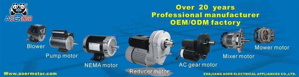 high power max geared electric motor long shaft