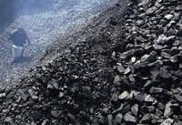 High Quality Steam Coal Exporter