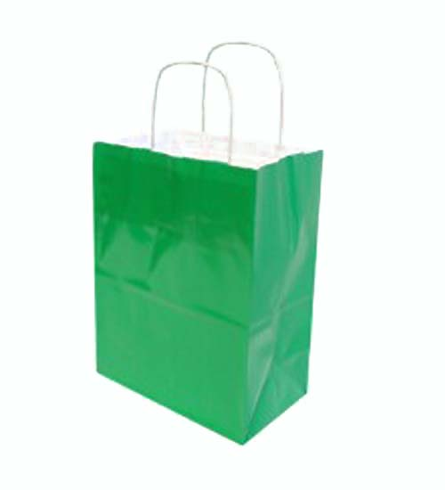 Paper Mini Gift Bag Green