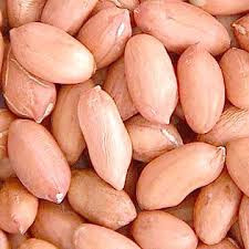 HIGH PROTEIN PEANUTS