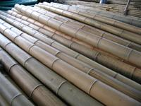 High Quality raw bamboo poles for building With Great Quality