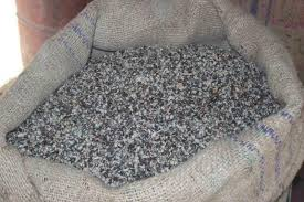 cotton seeds for animal feed