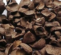 Buy PALM KERNEL NUTS in China on Alibaba.com