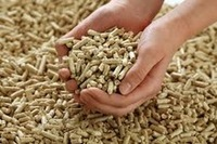 Biomass fuel wood pellets for sale