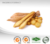 Finger Root Powder Extract : Alpinetin, Pinostrobin, 5,7-DHF, 5,7-DMF : Strengthen energy, Anti-bacterial