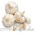 Dried Garlic FOR SALE