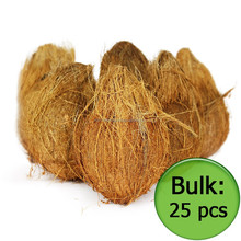 Dry Coconut, Semi Husked