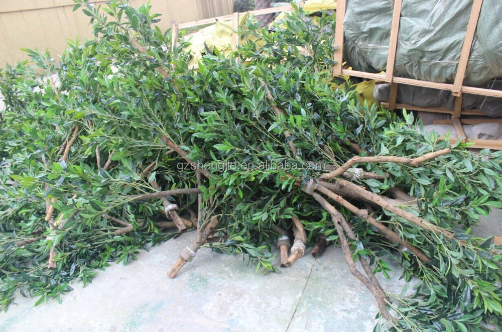 Artificial olive tree large fake olive tree for sale for Olive trees for sale