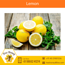 Superior Fresh Quality Yellow Lemon for Sale