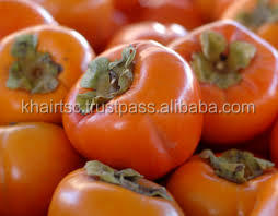 persimmon FOR SALE