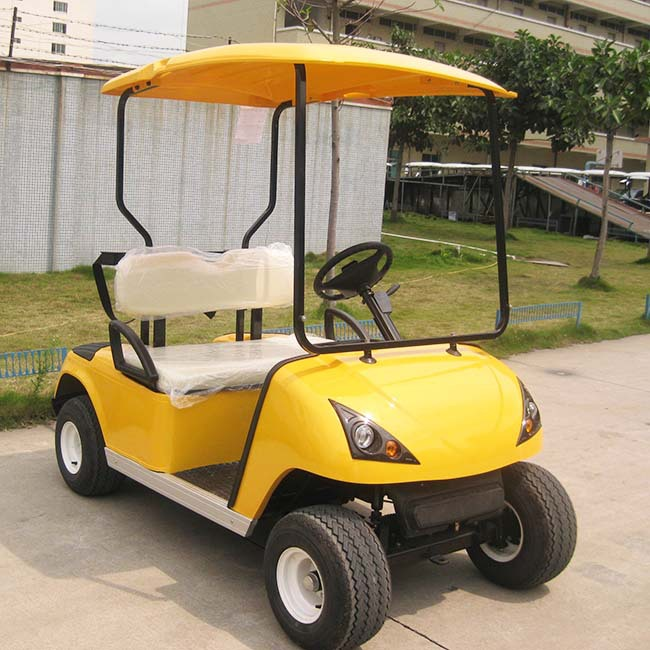 2 seater Electric Golf Cart DG-C2 for sale with CE certificate from China