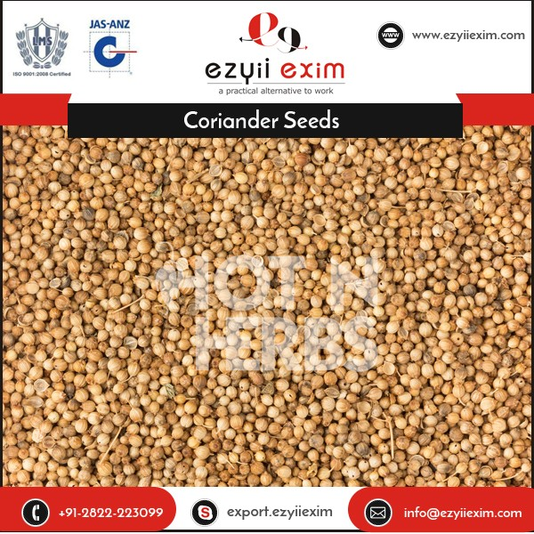 Export Quality Aroma Rich Dried Coriander Seed Spices for Various Dishes