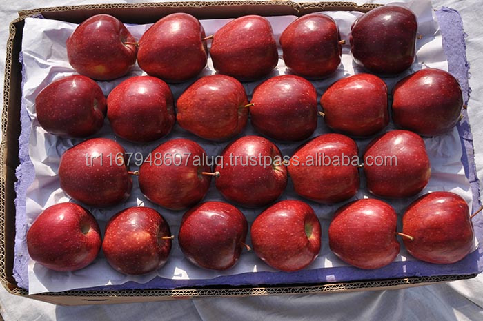 Red Fuji Apple from Turkey best price oder now