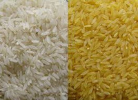 long grain Parboiled Rice 5% 25% 100% broken