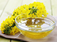 Rapeseed oil Best quality