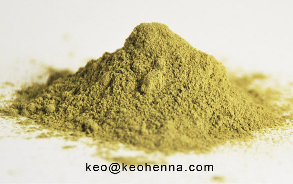 Pure Rajasthani Henna Powder on Wholesale