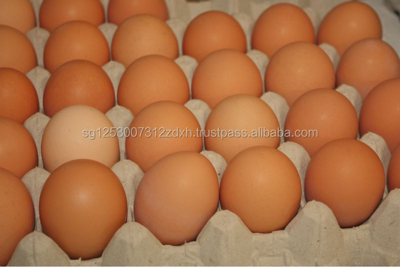 Fresh White and Brown Chicken Table Eggs