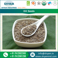 Wholesale Supplier of Pure Dill Seeds in Global