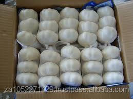 Fresh Garlic/Best quality/ competitive price /fast delivery time /wholesale supply.