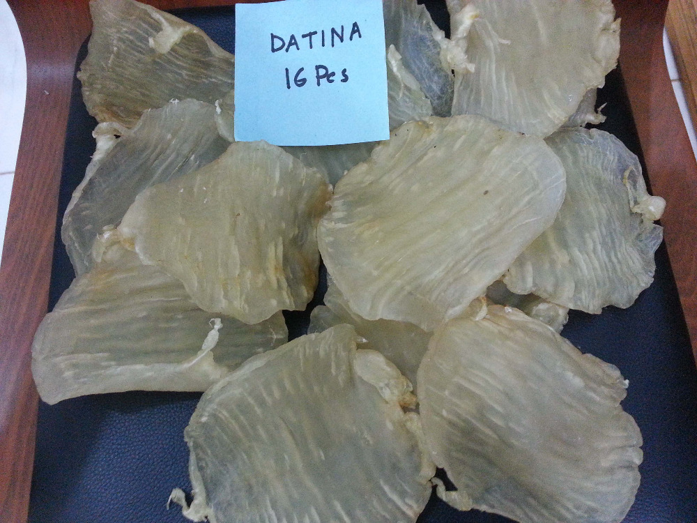 Datina (Male) Dry Fish Maw
