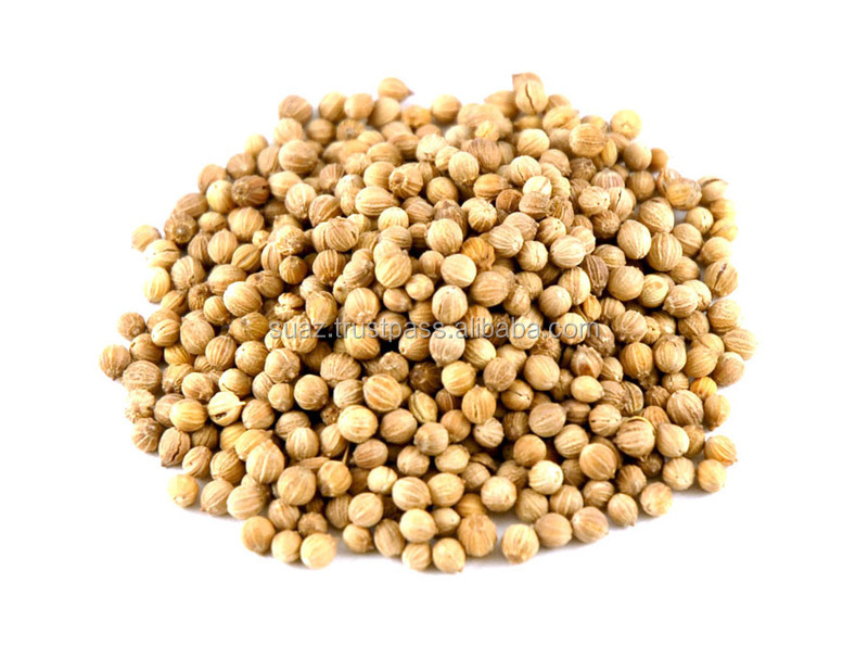 Brown Fresh Dried Coriander Seed , Pure Fresh Dried coriander seeds , Wholesale Coriander Seed Price