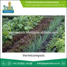 Plant Growth Enhancer Vermicompost for Agriculture Application