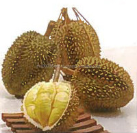 Thai Fresh Monthong durian. Fresh durian, Frozen durian