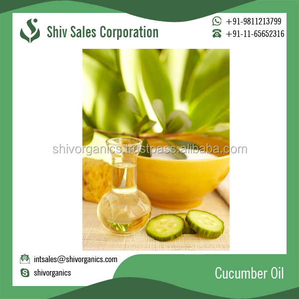 Widely Used Natural Cucumber Oil Available for Bulk Purchase