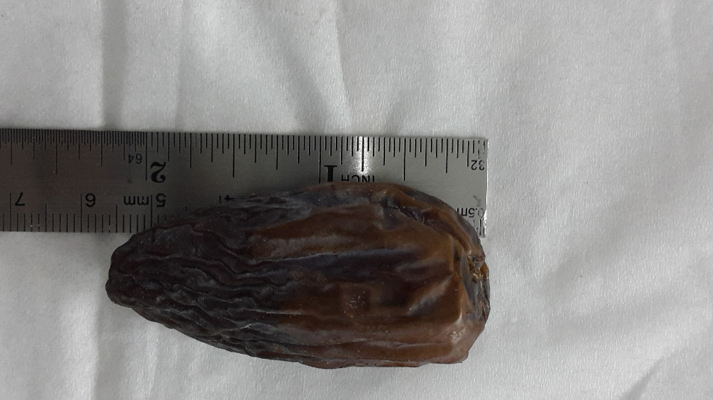 Medjool Dates - high quality and larg size