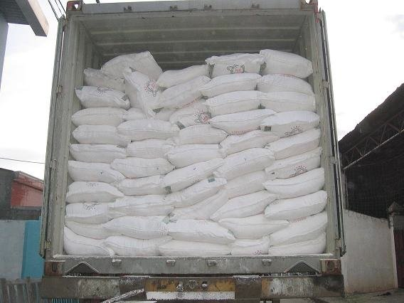 Urea Prilled, Urea 46% Nitrogen Fertilizer