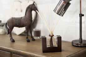 new design aroma reed diffuser