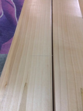 Grade-2 English Willow Plain Cricket Bat Low Price Bat
