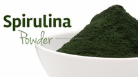 spirulina powder from india