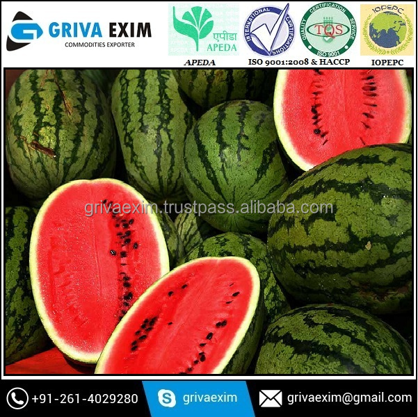 Best Selling Price For Watermelon