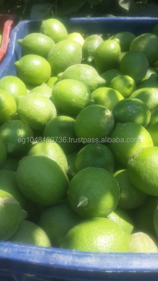 Citrus Fruit Product Type and GREEN-YELLOW Color LEMON