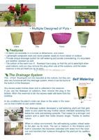Unique designed flower pot