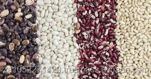 Hot Sale HPS/Machine Cleaned Quality Dried Sparkled Kidney Sugar Beans or Light Speckled Sugar Beans in Stock Fast Delivery