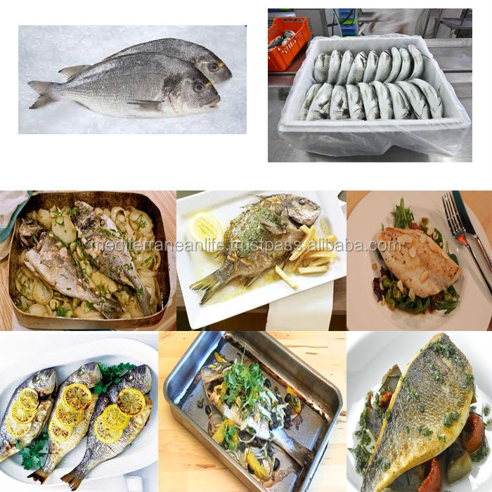 Fresh sea bream, High Quality Fish Sea Bream, Tunisian Fish