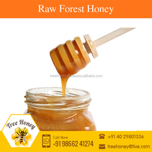 Fruity and Moderately Sweet Raw Forest Honey for Children