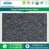 Superior Quality Organic Black Sesame Seeds for Malaysian Wholesale Markets