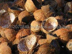 COCONUT SHELL FOR MAKE ACTIVATED CARBON