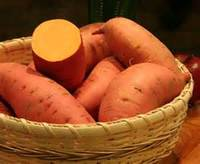 orange fleshed sweet potatoes