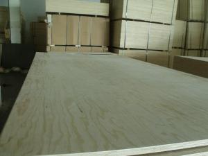 Vietnam Packing And Construction Plywood