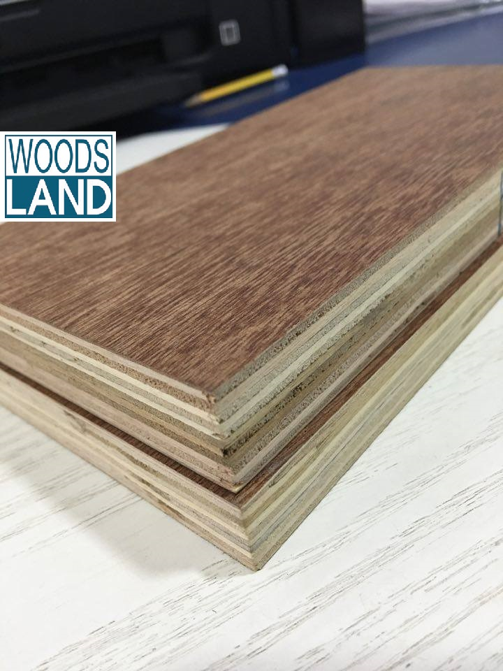 Hot sell 8,5*1220*2440mm 5 Ply Indoor Plywood