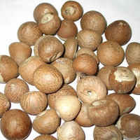 Betel Nut Agricultural Product