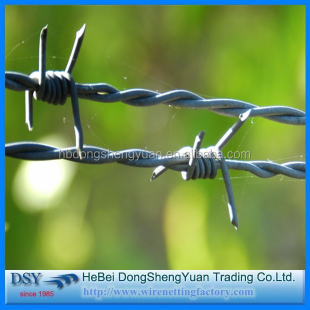 Barbed Iron Wire (70).jpg