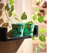 Outdoor Two Planters, small Garden Planters, Garden Planters