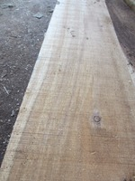 Acacia wood sawn timber
